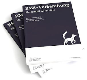 LearningCulture Lehrmittel BMS Mathematik