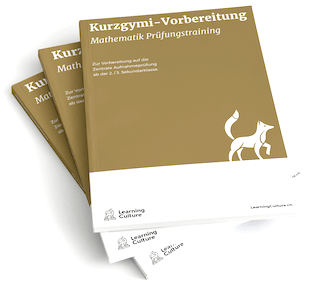 LearningCulture Kurzgymi Lehrmittel Mathematik